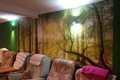 Wall-Mural_Mar20